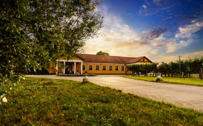Gál Szőlőbirtok és Pincészet wine catalogue, bor, vino catálogo, advertisement, idyllic, winery